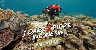 berani-mengxplore-keindahan-indonesia-di-wakatobi